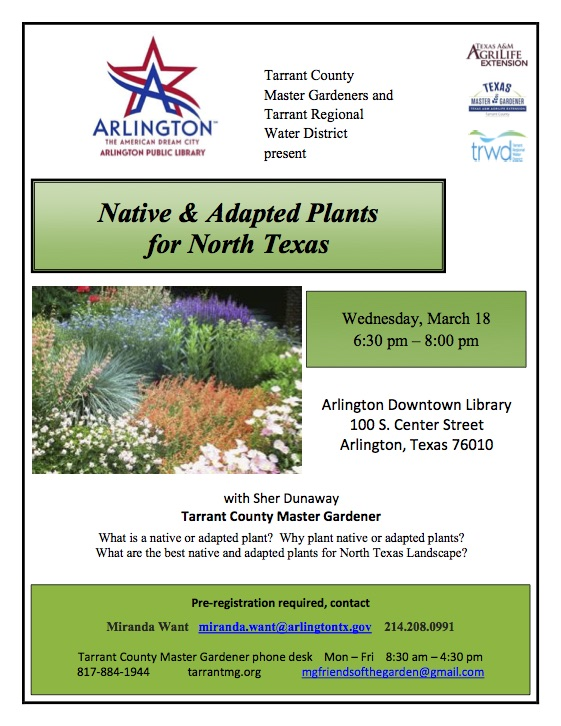 Native and Adapted Plants flier